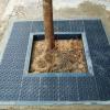 Đá bó gốc cây xanh đen 10x15x100cm